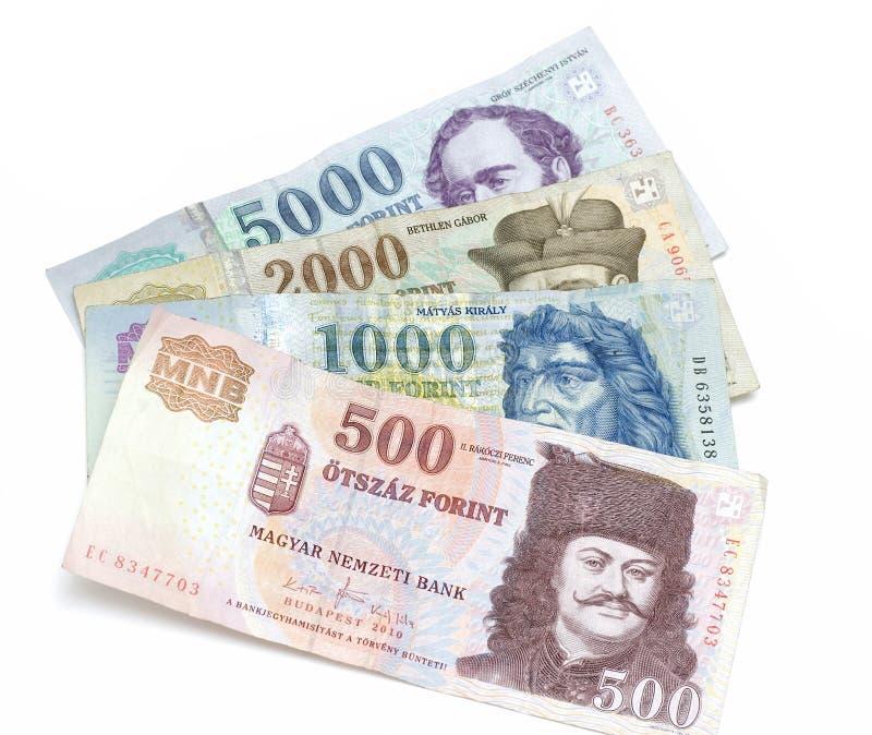 Ungarische Forint-Banknoten lizenzfreies stockbild