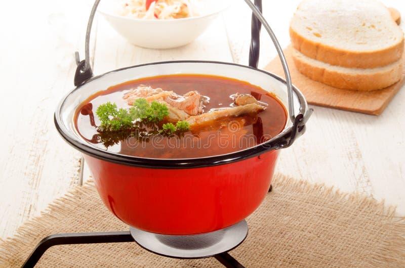 Ungarische Karpfensuppe in einem Kessel und in einem sauren Salat stockbild