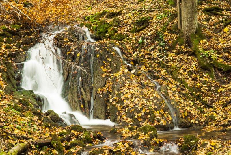 Ungarn, Szalajka-Tal im Herbst stockbild