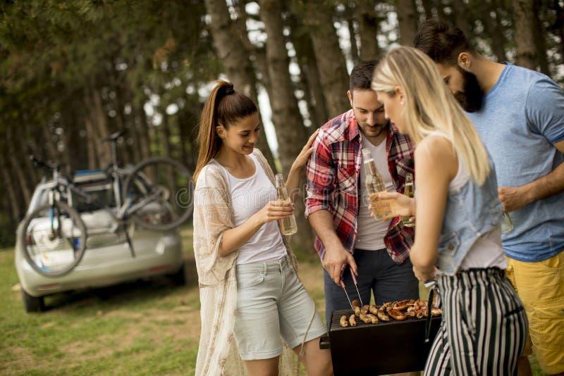 Ungdomarsom tycker om grillfesten, festar i naturen royaltyfri fotografi