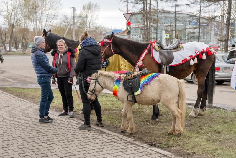 Ungdomarstår med hästar, och ponnyer, som de sköter, i parkerar under berömmen av Victory Day WWII royaltyfri foto