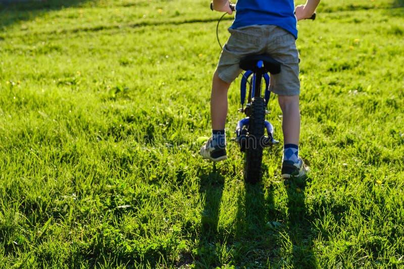 Unge f?r cykel f?r cykelbarnsommar activatoren arkivfoto