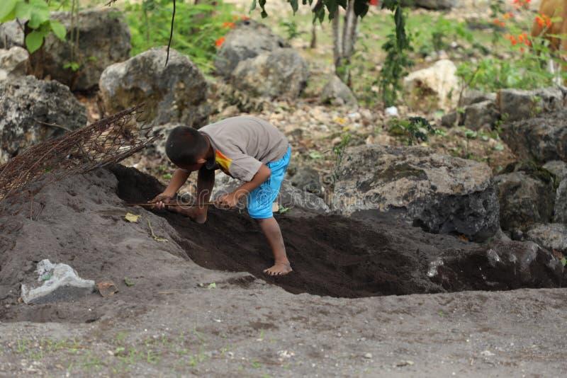 Unge som gräver ett hål arkivbild