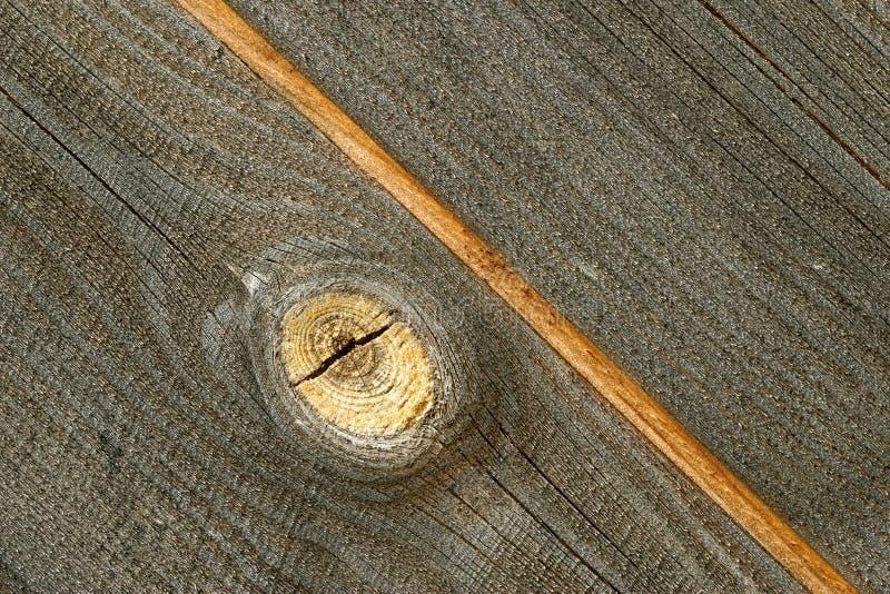 Ungefärligt trä
