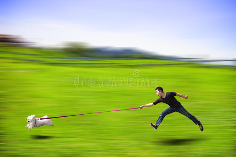 Ungehorsamer Hund, der schnell läuft und einen Mann durch die Leine schleppt lizenzfreies stockfoto