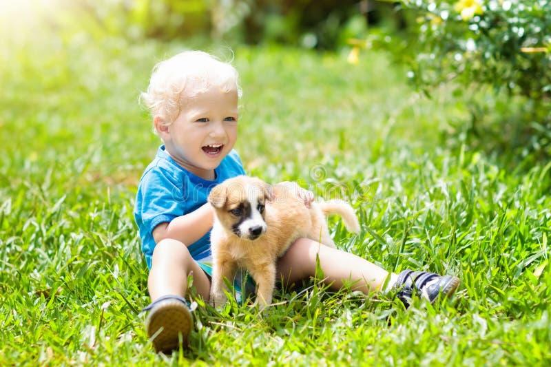 Ungelek med valpen Barn och hund i trädgård arkivbild