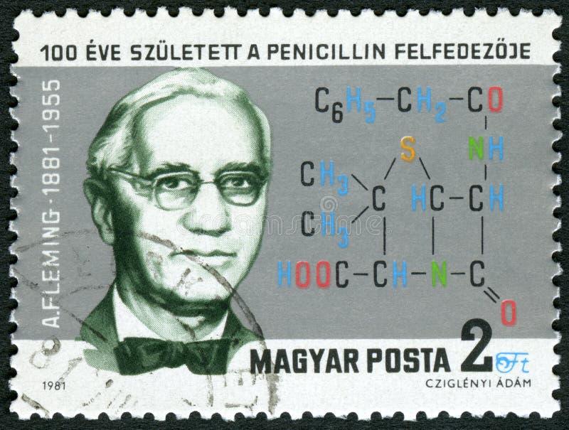 UNGERN - 1981: shower Sir Alexander Fleming 1881-1955, upptäckare av penicillin royaltyfri bild