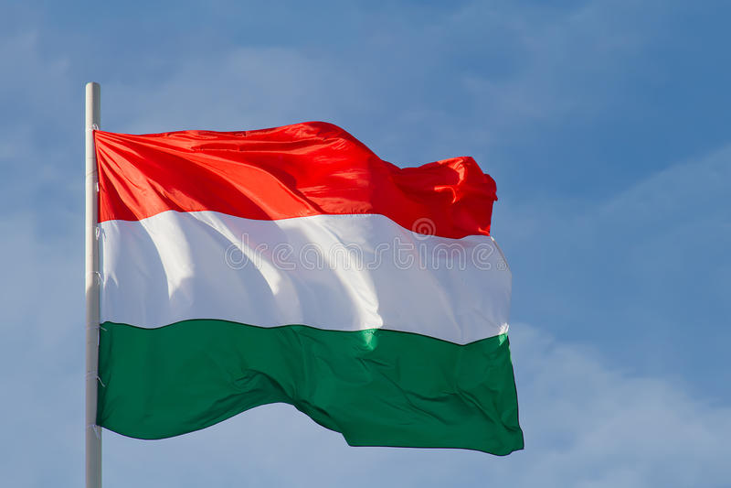 Ungernflagga royaltyfri foto