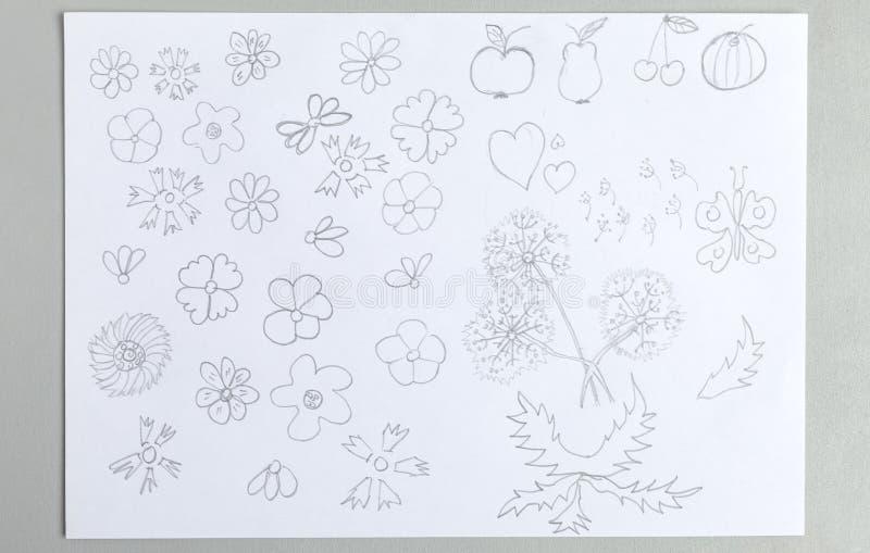 Ungeteckningar ställde in av olik frukter och fjäril för blommahuvud royaltyfri foto