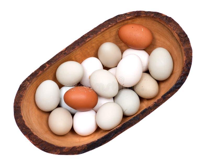 Ungewaschene frische organische freie Weide GVO und des Sojabohnenöls hob warme gemütliche Winterhandschuhe der Hühnereien an stockfotos