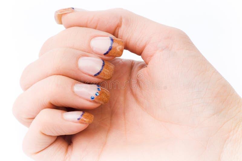 Unghie colorate femmina fotografia stock libera da diritti
