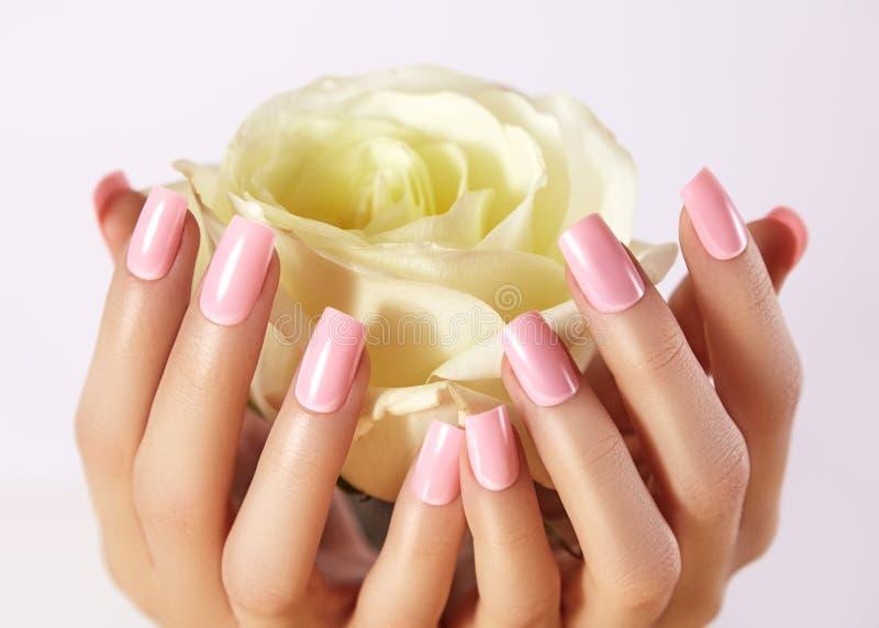 Unghie dipinte con smalto rosa Manicure con nailpolish Manicure di arte di modo, lacca del gel L'acrilico inchioda il salone immagini stock