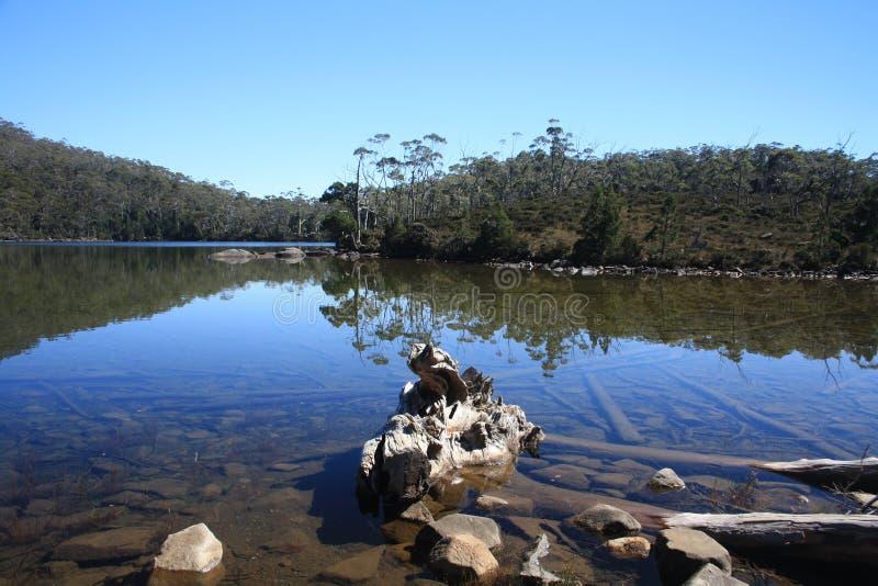 Unglaubliche Reflexionen im Wasser stockbilder