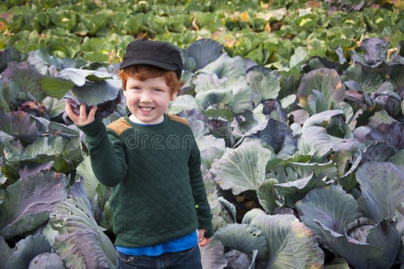 Ungt arbeta i trädgården för pojke royaltyfri foto