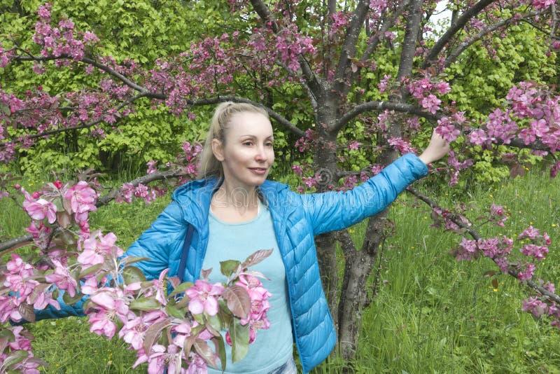 Ungt attraktivt kvinnaanseende nära det blomstra karmosinröda äppleträdet royaltyfria foton