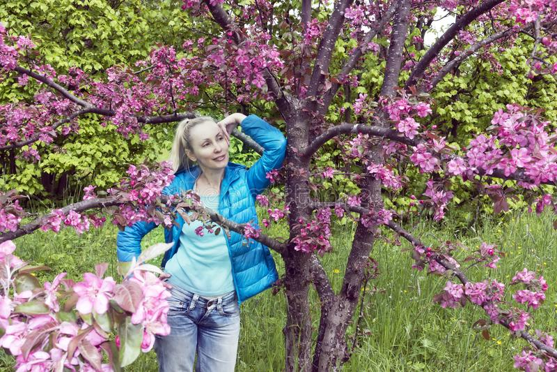 Ungt attraktivt kvinnaanseende nära det blomstra karmosinröda äppleträdet fotografering för bildbyråer