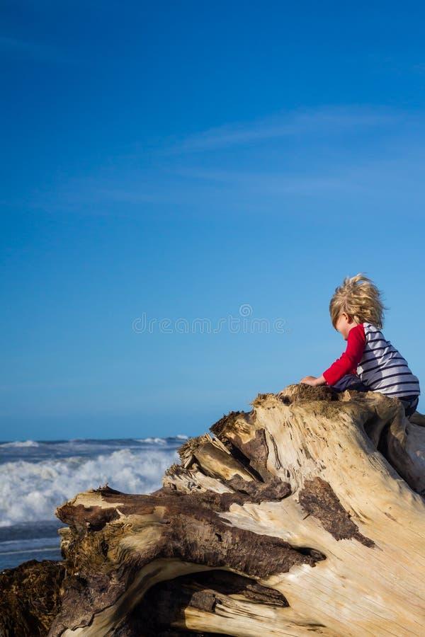 Ungt barnklättringträd som ser havet arkivbilder