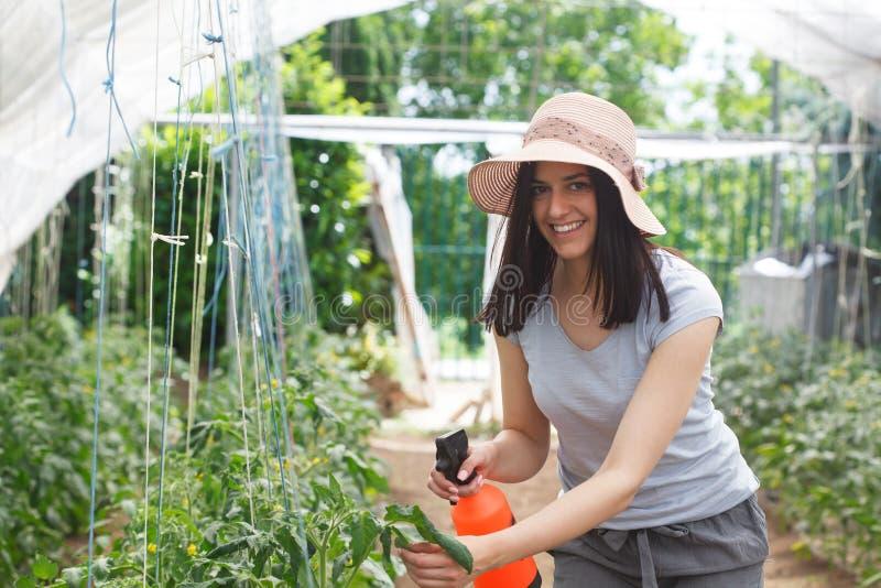 Ungt beautufullkvinna som arbetar i ett växthus fotografering för bildbyråer