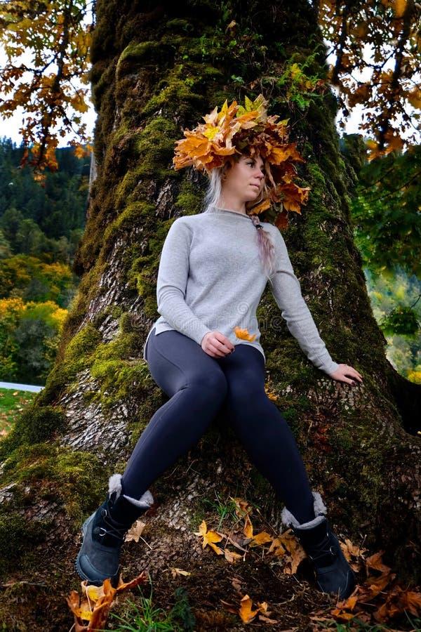 Ungt härligt kvinnasammanträde vid lönnträdet med gulingsidor i nedgång arkivfoton