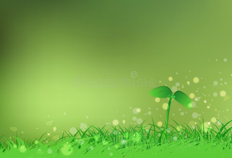 Ungt träd av trädet med för Bokeh för friskhet för gräsfält oskarp sc stjärnor stock illustrationer