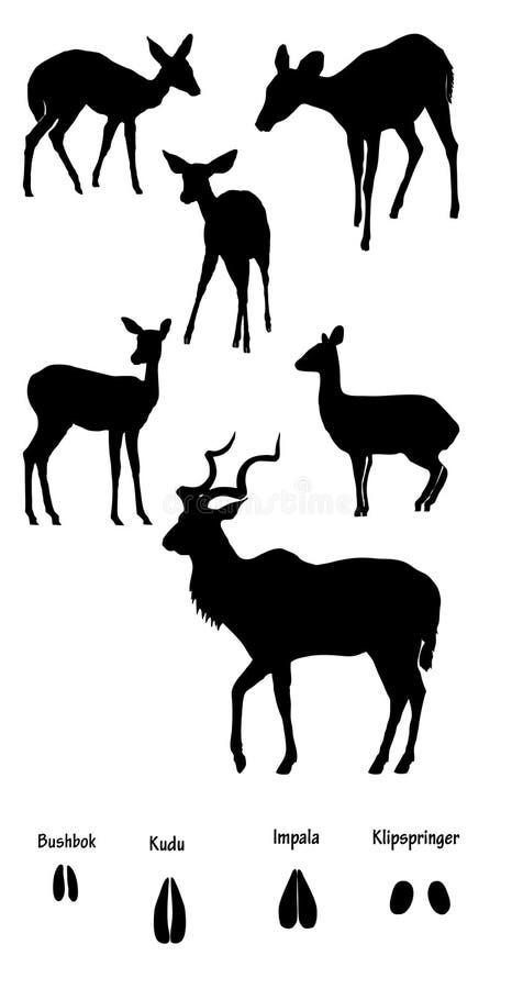 Ungulates africani in siluetta illustrazione vettoriale