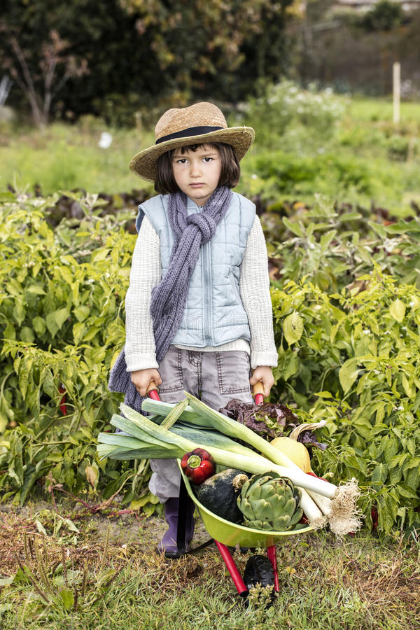 Unhappy little gardener pushing wheelbarrow of vegetables for healthy diet royalty free stock photography