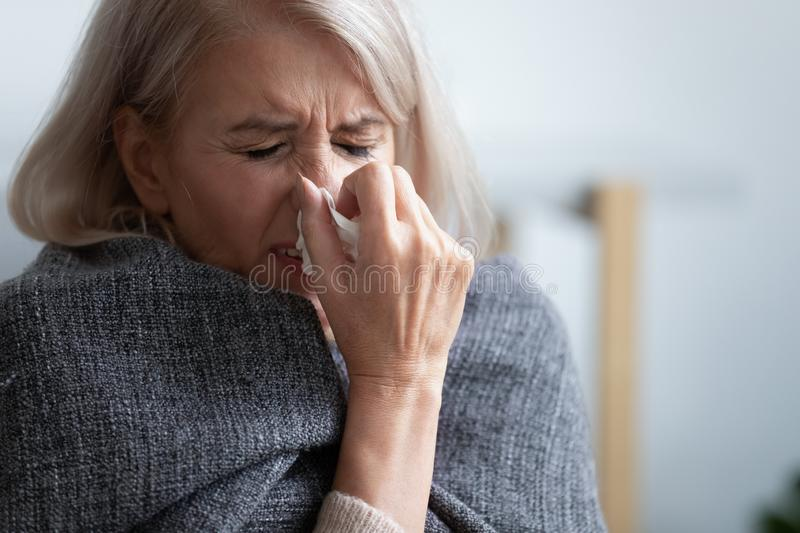 Unhappy mature woman covered blanket feeling bad, sneezing. Close up, holding handkerchief, suffering from fever, allergic reaction or seasonal infection, upset stock photo