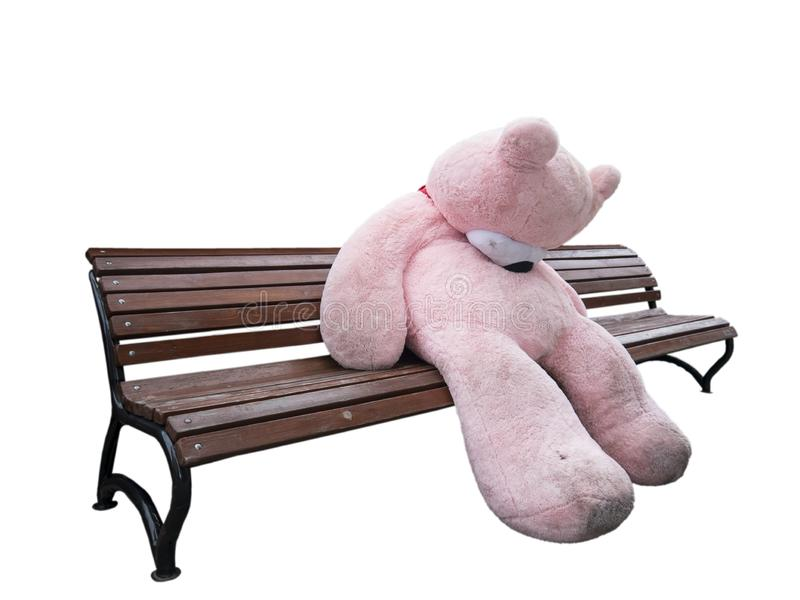 Unhappy plush giant bear on wooden bench isolated on white royalty free stock photography
