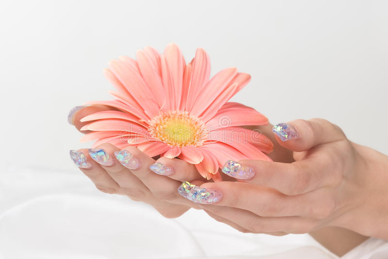 Unhas do gel e flor cor-de-rosa imagens de stock