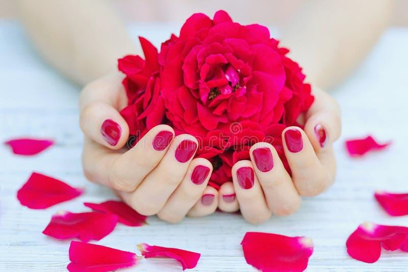 Unhas e flores Manicured imagens de stock