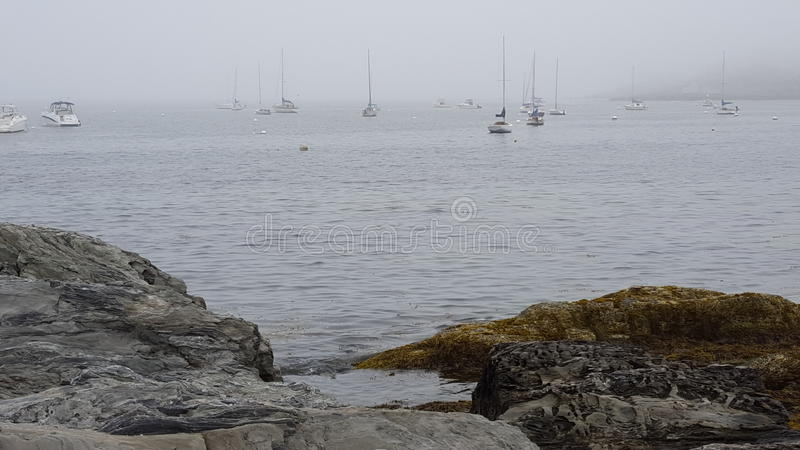 Unheimlicher Nebel stockfotografie