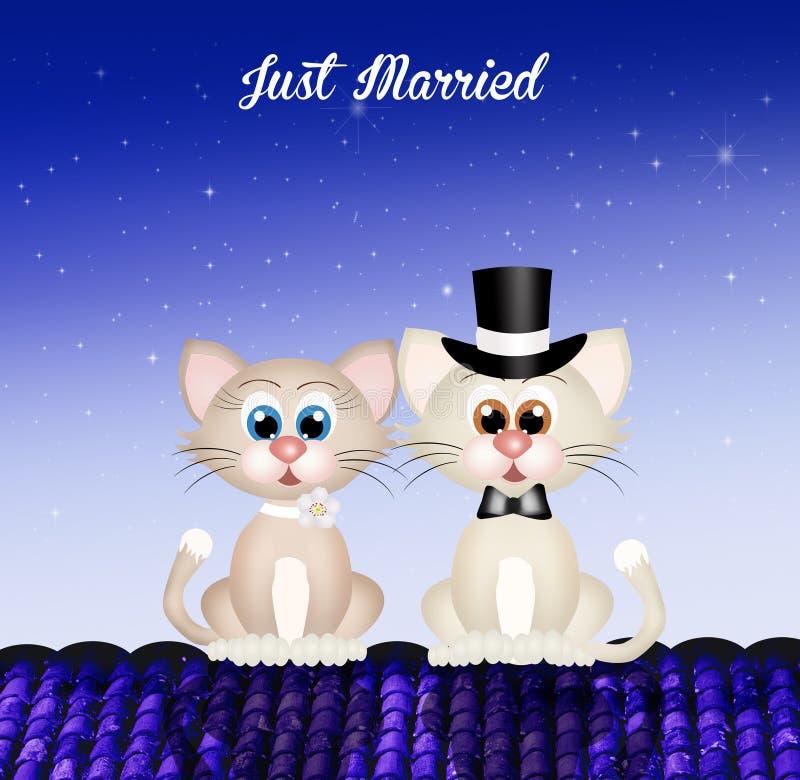 União dos gatos ilustração royalty free