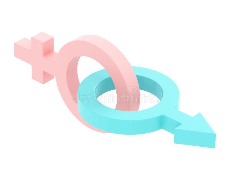 União masculina e fêmea dos símbolos ilustração royalty free