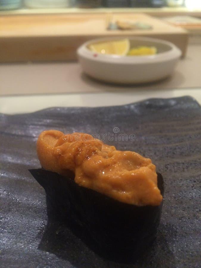 Uni sushi foto de archivo libre de regalías