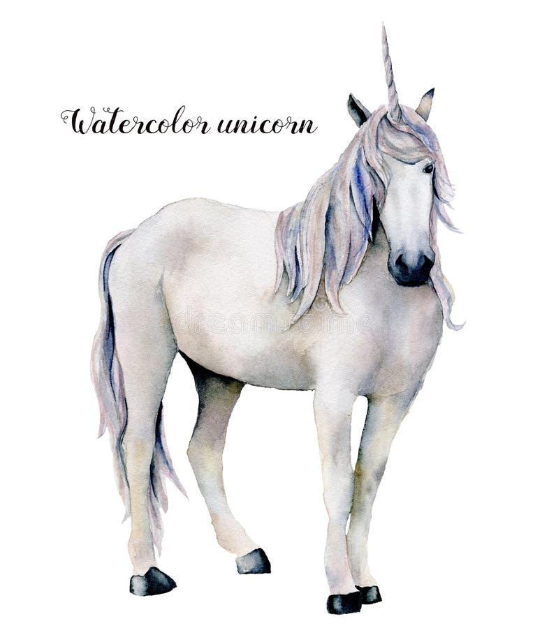Unicórnio branco elegante da aquarela Cavalo mágico pintado à mão isolado no fundo branco Caráter do conto de fadas ilustração stock