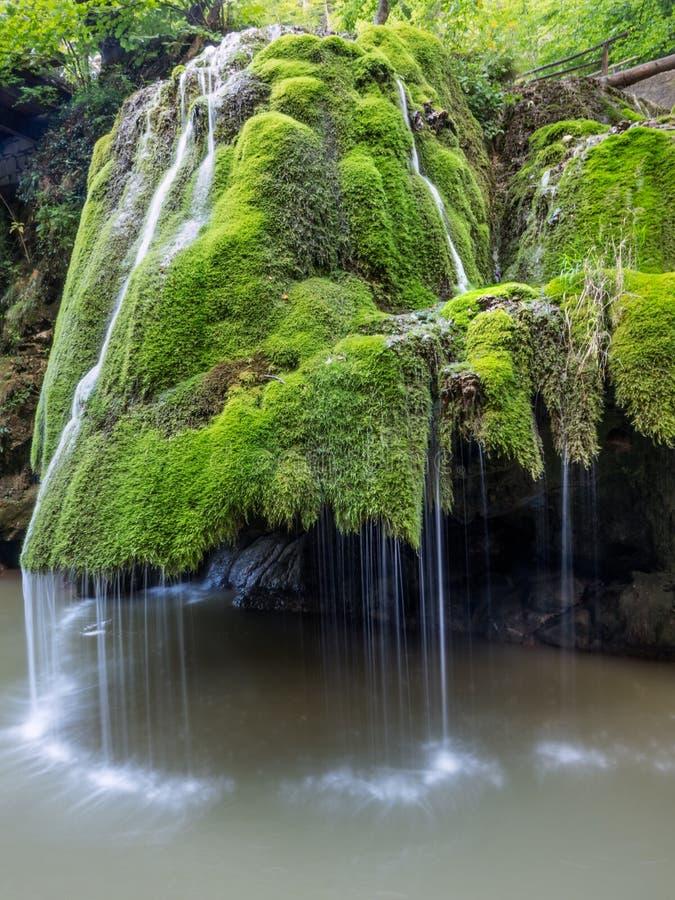 Unic piękna Bigar siklawa pełno zielony mech fotografia stock