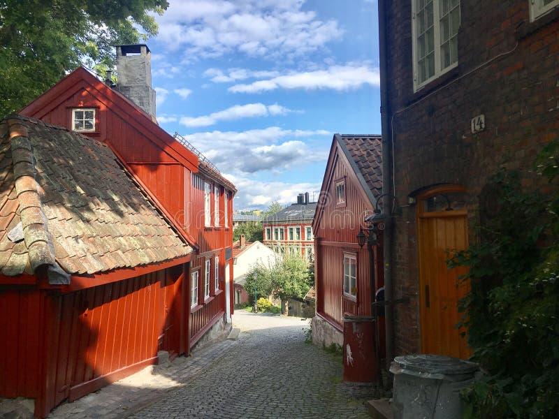 Unico a Oslo, Norvegia immagini stock