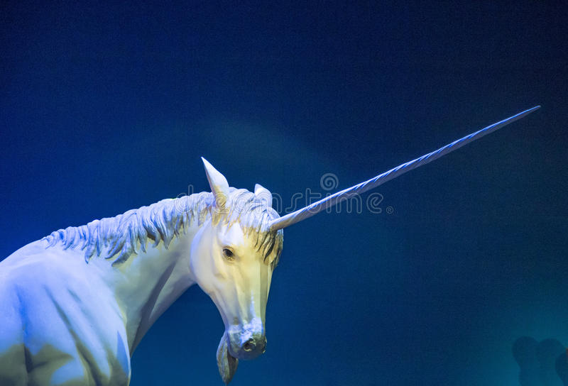 unicorn photographie stock