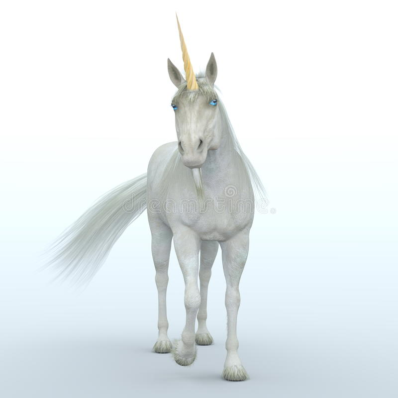 unicorn illustration stock