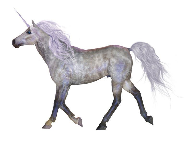 Unicorn On White Royalty Free Stock Photos