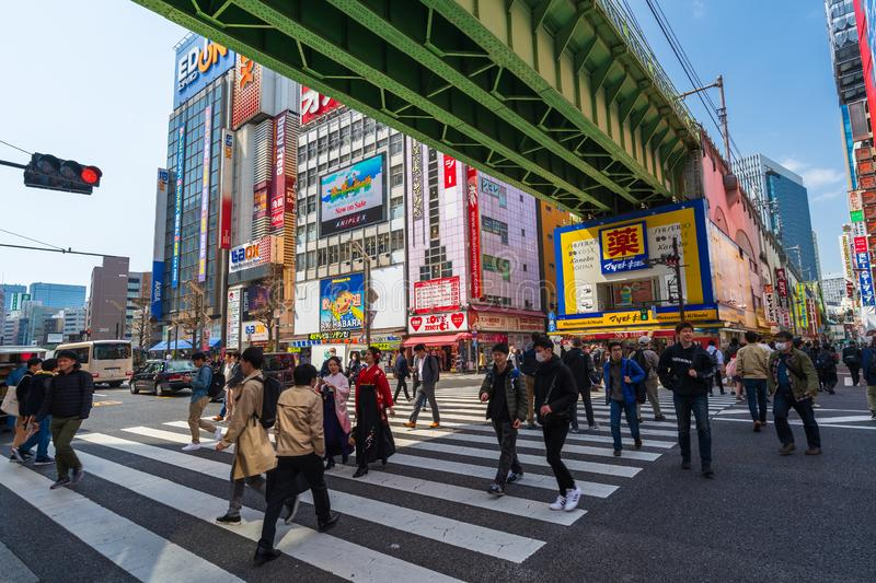 Unidendified people walk across the street in Akihabara at Tokyo, Japan. Akihabara, JAPAN - March 25, 2019: unidendified people walk across the street in royalty free stock image