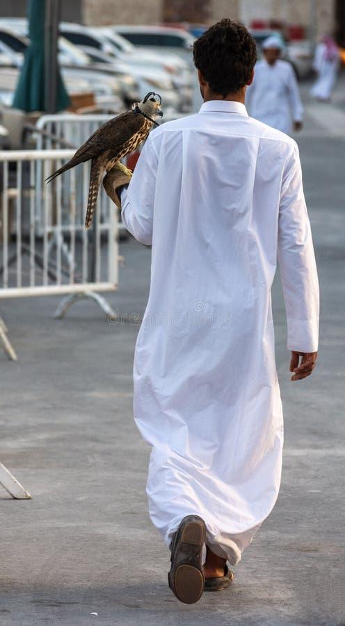 Unidentifiable arabisk man som bär en falk i Qatar arkivfoton