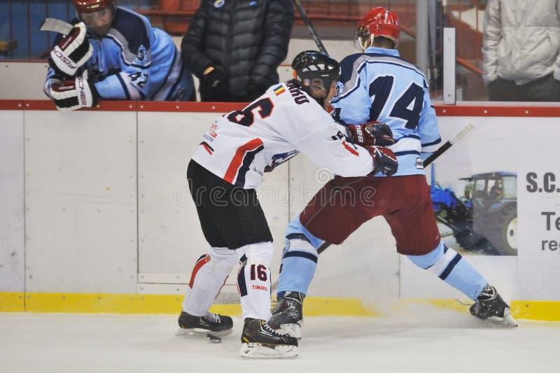 Unidentified hockeyspelare konkurrerar royaltyfria foton