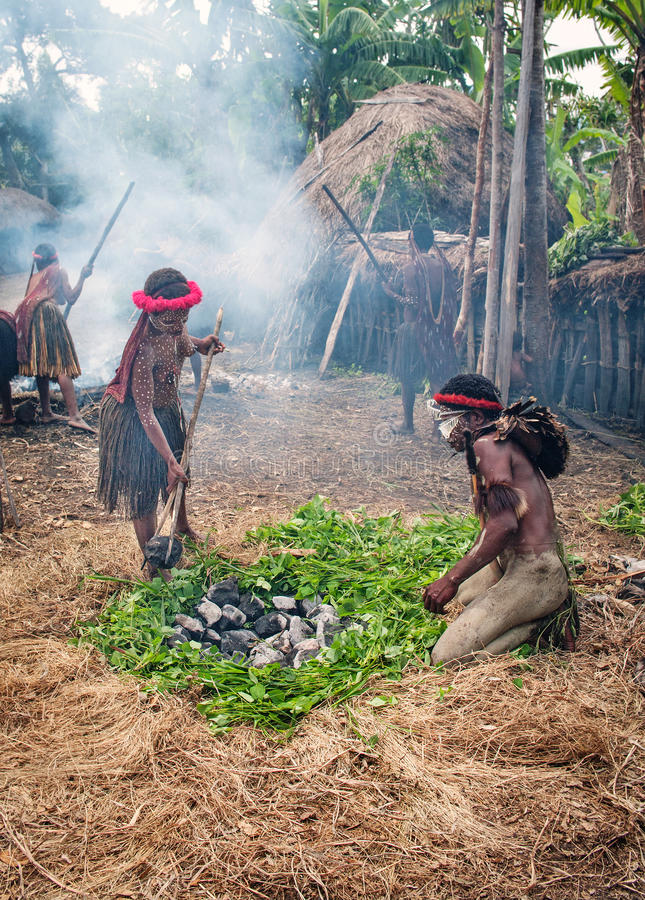 Unidentified man of a Papuan tribe. PAPUA PROVINCE, INDONESIA -DEC 28: Unidentified man of a Papuan tribe uses an earth oven method of cooking pig, at New Guinea royalty free stock photo