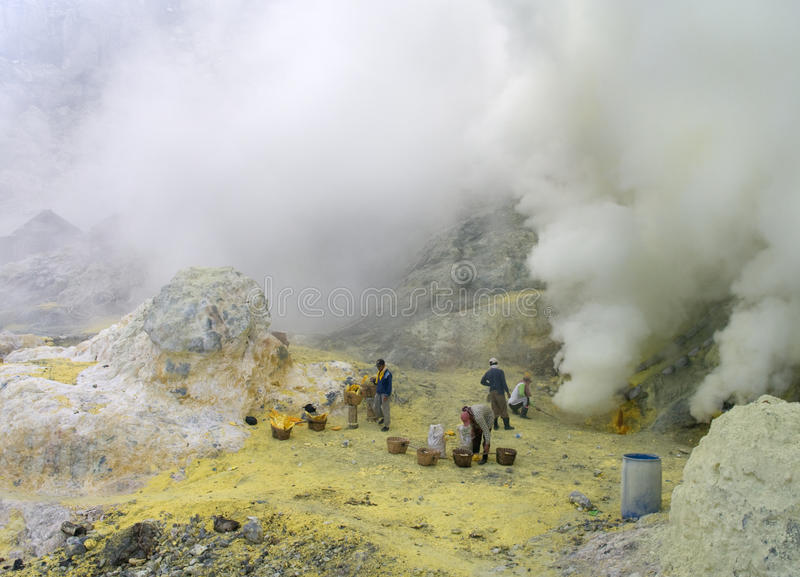 Unidentified miners harvests raw sulphur from the stock photo