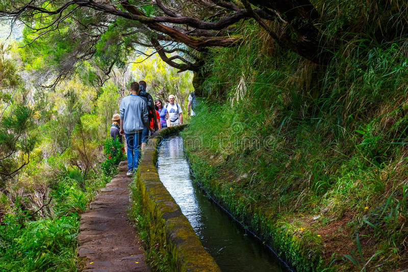 Unidentified people walking to Levada Risco, Madeira Island, Portugal. Madeira, Portugal 04 JULY, 2016: Unidentified people walking to Levada Risco, Madeira royalty free stock photo