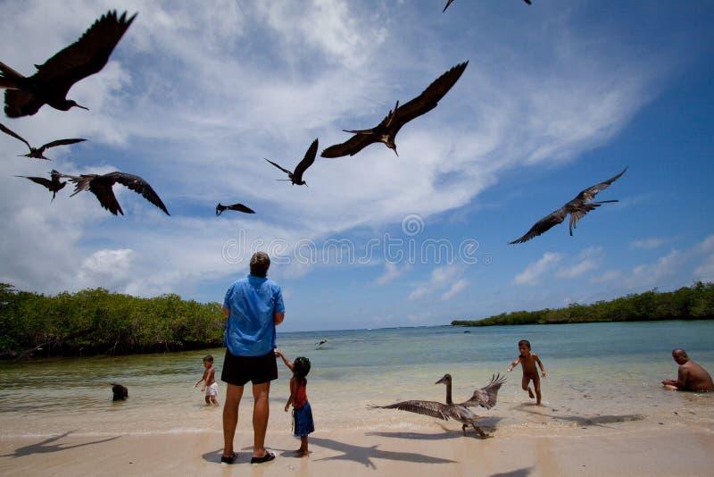 Unidentified tourists enjoying watching seabirds. GALAPAGOS, ECUADOR - MARCH 10, 2010: Unidentified tourists enjoying watching seabirds in Playa de los Alemanes royalty free stock photos