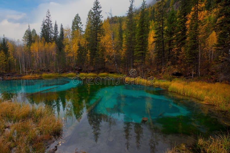 Uniek in aard en het verbazende meer van de schoonheidsgeiser stock foto