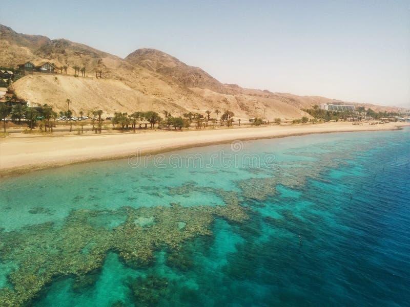 Unieke koraalrif/woestijnmening stock foto