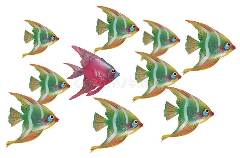 Unieke Vissen stock afbeeldingen